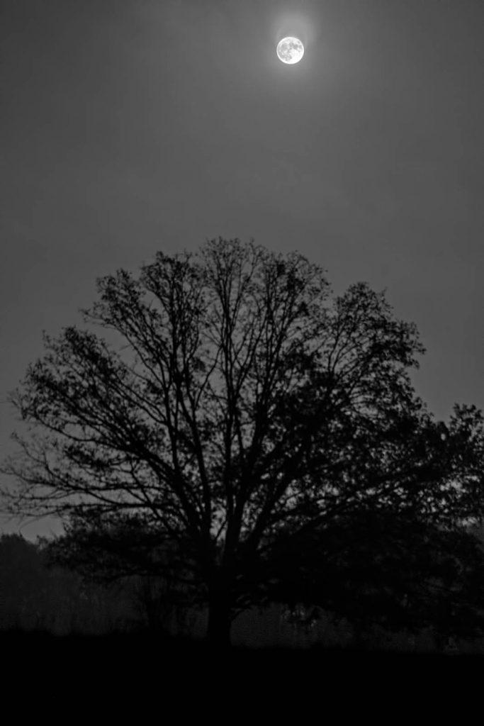 Super pełnia  Księżyca 2016