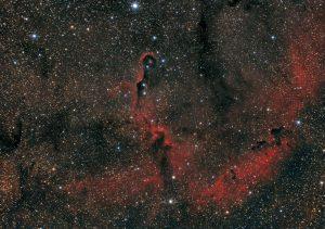 Mgławica Trąba Słonia (vdB 142) IC 1396